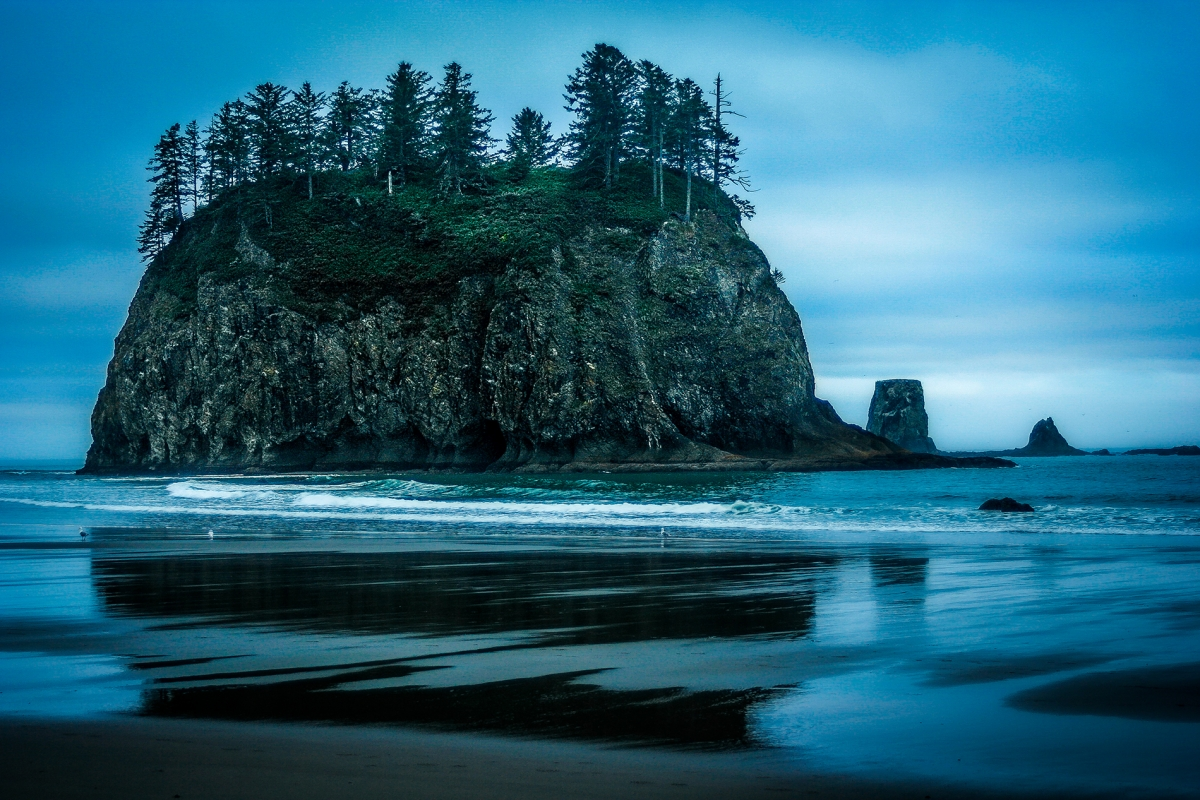 Olympic Sea Stacks