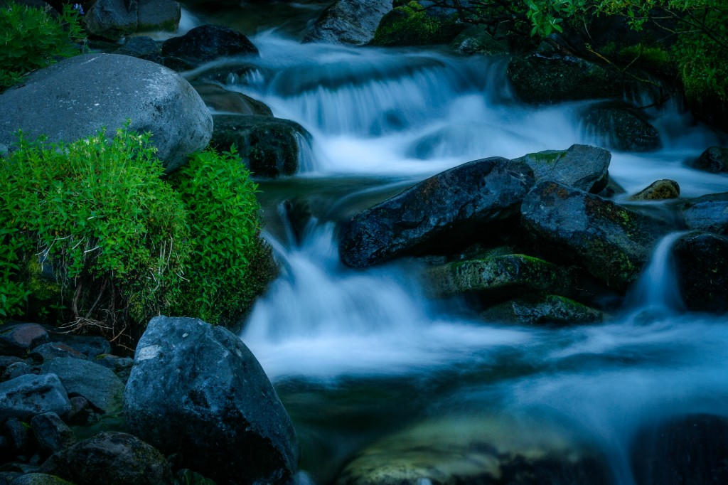 A small stream in Mount Rainier National Park.